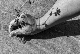 Pflanze im Sand - von Andreas Lüdtke fotografiert