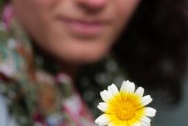 Blume gelb-weiß - von Ellen fotografiert
