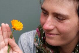 Eine gelbe Blume betrachten - von Ellen fotografiert