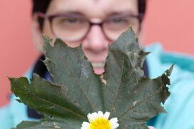 Blüte und Blatt - Marlena Meyer