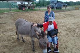 Sommerausflug zum Bauernhof